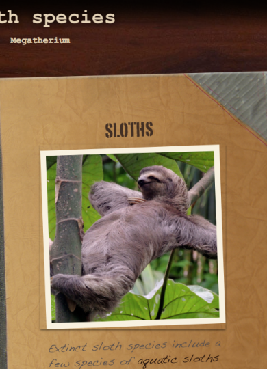 Sloth.Learn2Code.club